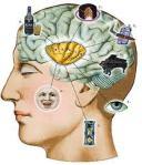 Cara Meningkatkan Daya Ingat Otak